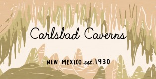 Illustrator: Julia Kuo - Carlsbad Caverns