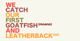 iMovie-Fishing-Intro-11-Leatherback