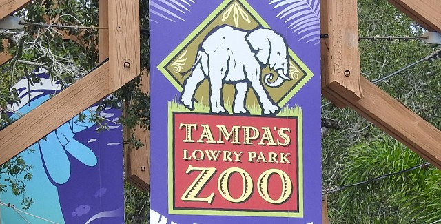 REVIEW: Tampa Lowry Park Zoo