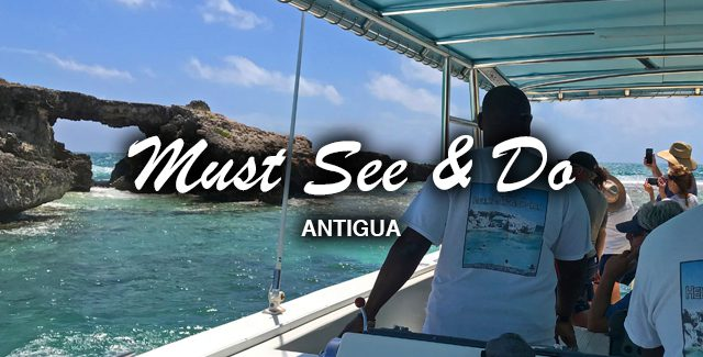 Port Excursion: Eli's Eco Tour with Adventure Antigua