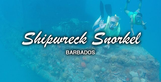 Port Excursion: Snorkeling the Shipwrecks (Carlisle Bay, Barbados)