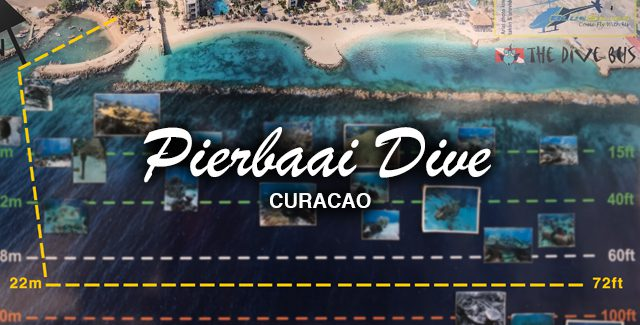 A Gradual, Sloping and Uncrowded Descent Dive in Curacao (Willemstad, Curaçao)