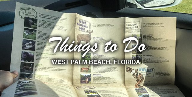 Why Visit Lion Country Safari (West Palm Beach, Florida)?