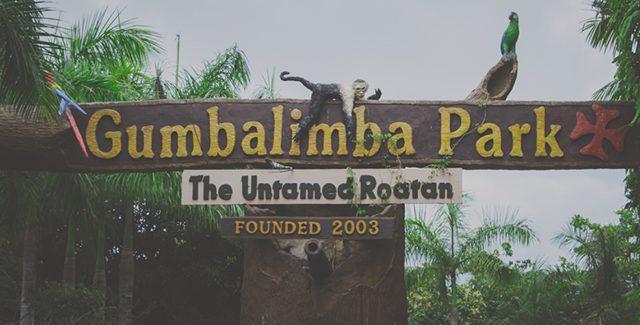 Walking Photo Tour through Gumbalimba Park (Roatan, Honduras)