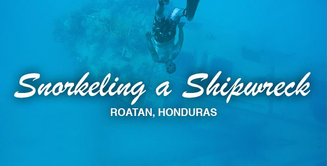 Cruise Port Excursion: Snorkeling – Prince Albert Wreck (Roatán, Honduras)