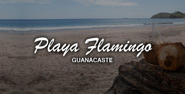 Day Trip from Tamarindo to Visit Playa Flamingo