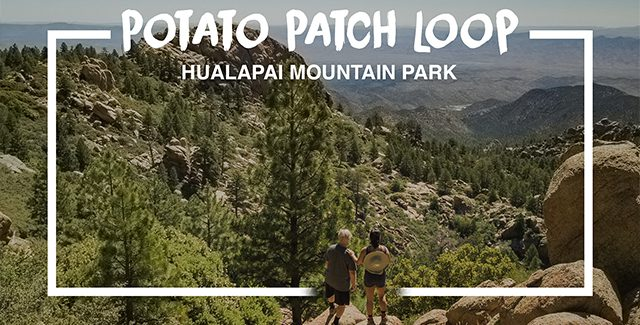 Featured Image: Potato Patch Loop